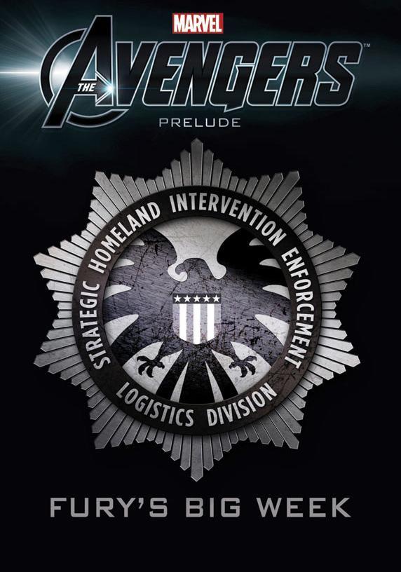 Avengers grossesemainenickfury textless