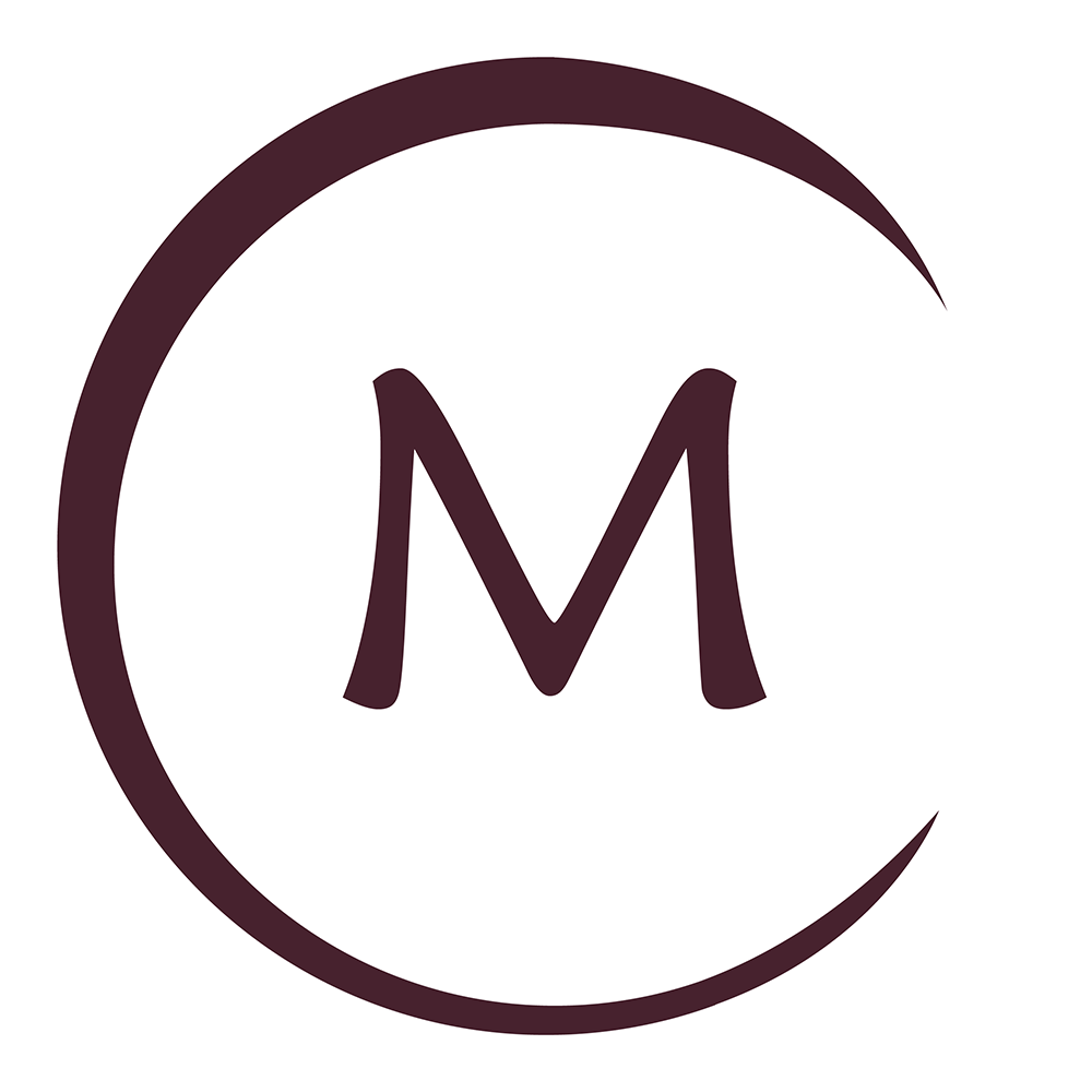 Metropolitan general hospital icon